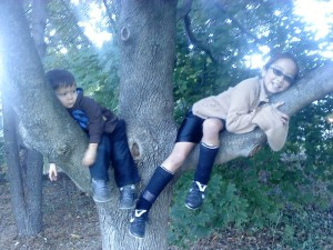 kids laying around in trees