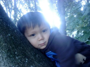 Thai-Son in tree